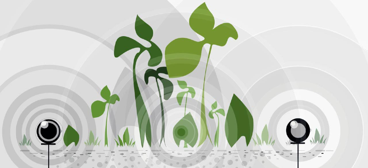 Agricultural Reactor - Life Force Energy for Plants