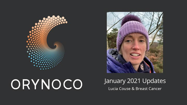 User Experience January 2021 Updates Video about Wholeness Support Unit for Breast Cancer by Lucia Couse