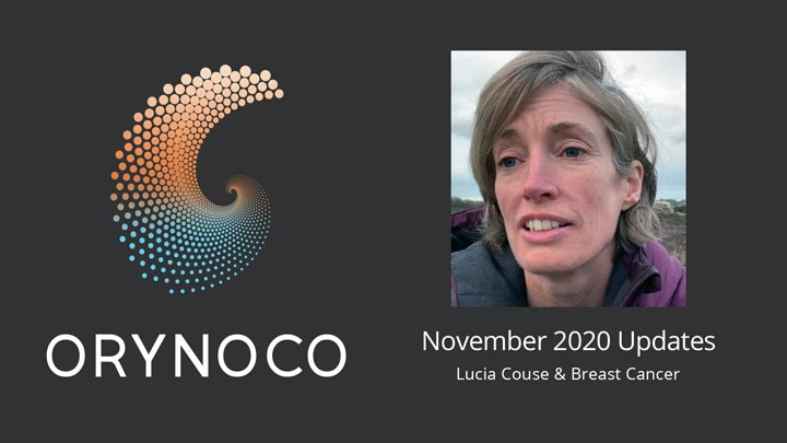 User Experience November 2020 Updates Video about Wholeness Support Unit for Breast Cancer by Lucia Couse